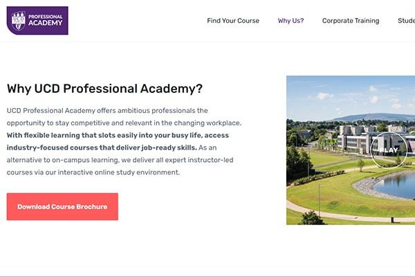 SEO website texts copywriting portfolio Engage Content Marketing Agency Dublin